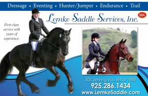 Lemke_SaddleJan12